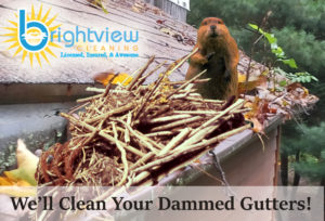 Gutter Cleaning, Gutter Guards, Gutter Screen