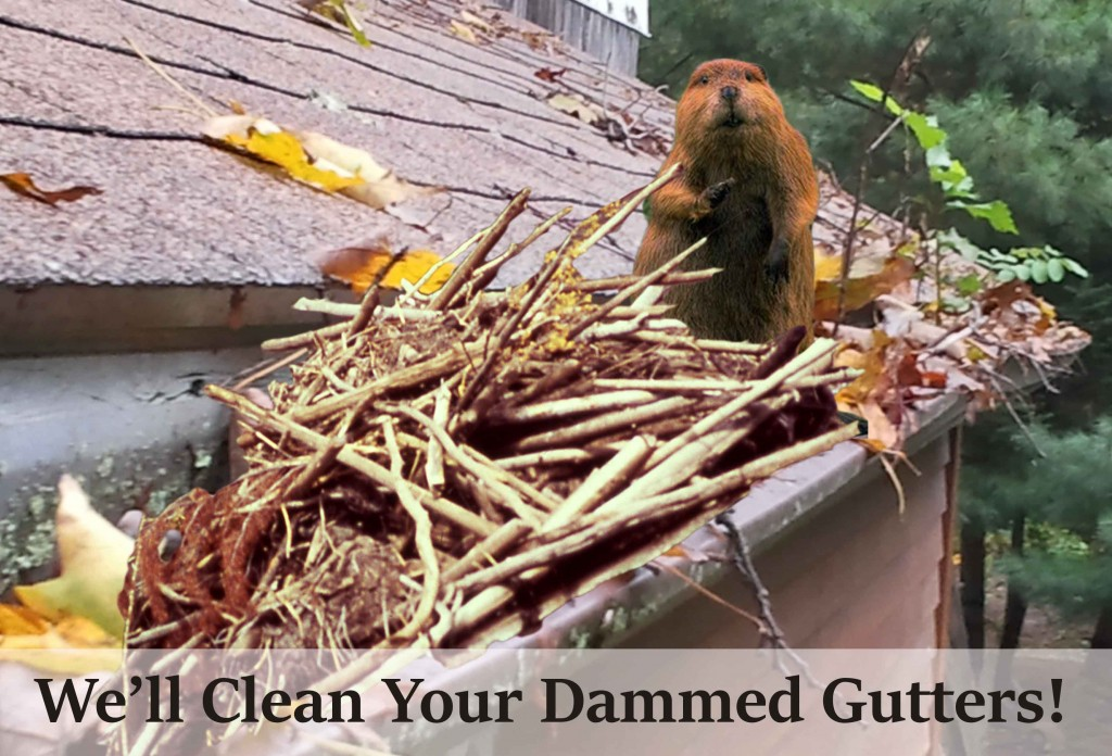 Gutter Cleaning Maryland Brightview Cleaning
